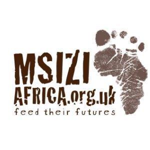 Msizi Africa